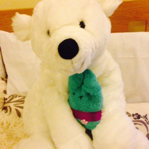 Last hug from Lennard the polar bear before leaving